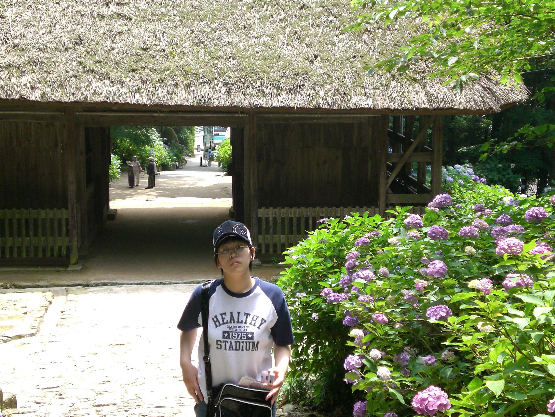 紫陽花が有名なお寺と自立歩行を行う妻