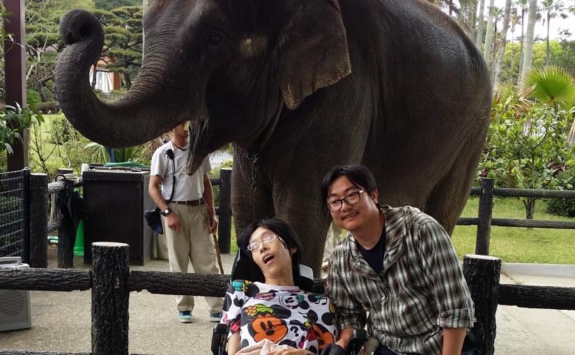 通院の帰りに:動物園
